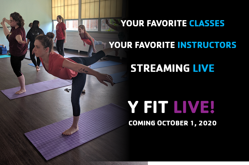 Y Fit Live! Now Available
